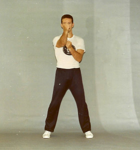 This is the classic Wing Chun center line punch. Note the position of the elbows aligning to the sides of the body as per the Sil Lum Tao. The elbows are pointing to the ground in order to transfer the power from the legs to the hands.
